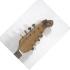 mandolin6.JPG